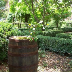 Exterior photo, rain barrel